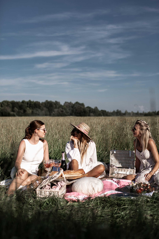 black-palms-picnic-in-pink-mit-martini-spurmanti-martini-rose-extra-dry-ma%cc%88dls-picknick-16